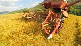 Harvester work in the field, harvesting stock video footage
