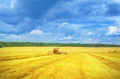 Harvester in work. Royalty Free Stock Photography