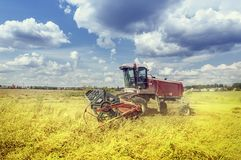 Harvester at work. Stock Image