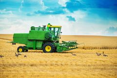 Harvester at Work Royalty Free Stock Photo