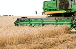Harvester working Royalty Free Stock Image