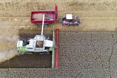 Harvester working on the field and filling the truck. Aerial view on the harvester working on the field and filling the truck Stock Photography