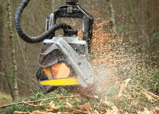 The harvester working in a forest. Royalty Free Stock Photos