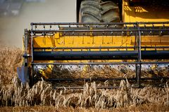 Harvester working on wheat field Stock Photo