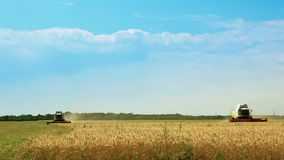 Harvesters gather the wheat. Summer. Blue sky and clouds. Sunny weather. The two combine are harvesting wheat stock footage