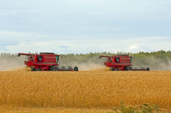 Harvesters Stock Photography