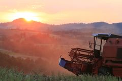 Harvesting. Old combine harvesting a wheat field, worn out combine on sunset background Royalty Free Stock Image