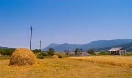 Harvesting. In fields in Armenia in summer season Stock Photos