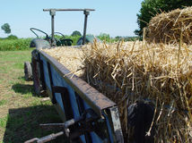Harvesting 2. Tractor with straw Stock Photography