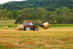 Harvesting - 2 Stock Image