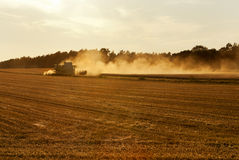 Harvesting Stock Photography
