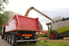 Harvesting. Compine loading a truck trailer Royalty Free Stock Photos
