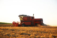Harvesting. Man driving his combine on harvesting Stock Photos