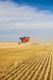 Harvesting. Dust & chaff swirl and create a haze around a combine harvesting a wheat field Stock Photography