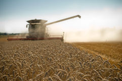 Harvesting. Background reaper harvesting a wheat field Royalty Free Stock Photo
