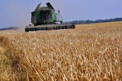Harvesting of barley in agricultural farm POLIVTSI. Chortkiv - Ternopil - Ukraine - July 26, 2016. Collection of malting barley using powerful komayniv in Stock Photo
