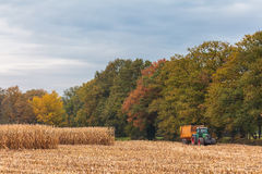 Harvesting cereals in autumn in the Netherlands Stock Photos