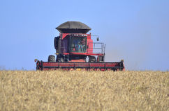 Harvesting cereals on Brazilian´s fields Stock Photography