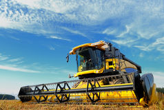Harvesting combine in the field Stock Photo