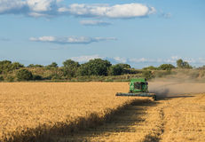 Harvesting combine in the field Stock Photography