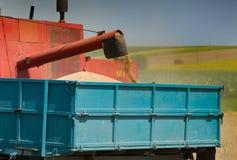 Harvesting Stock Image