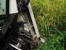 Harvesting of Combine harvester Stock Image