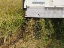 Harvesting of Combine harvester Stock Photo