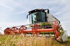 Harvesting combine in the wheat Stock Photos
