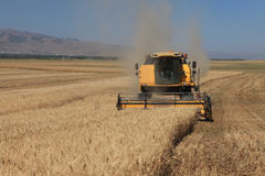 Harvesting combine in the wheat Royalty Free Stock Photos