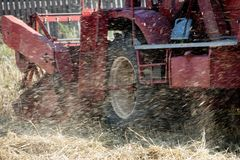 Harvesting combineworking at full capacity. Harvesting combine cutting  different grain in the field during the  fall Royalty Free Stock Images