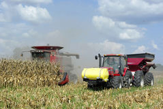 Harvesting Corn. A farmer harvests a corn crop using a combine Royalty Free Stock Image