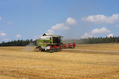 Harvesting corn. Combine and harvesting of corn on the czech farm Royalty Free Stock Photos