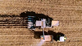 Harvesting Corn aerial details. Farmer using combine, tractor and machinery for autumn harvest stock footage