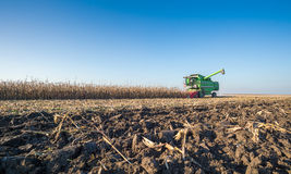 Harvesting of corn Stock Images