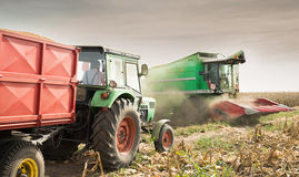 Harvesting the corn field Royalty Free Stock Photos