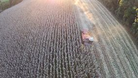 Harvesting a corn field with sunset stock footage