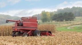 Harvesting Corn Royalty Free Stock Photos