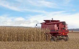 Harvesting a Cornfield Stock Photo