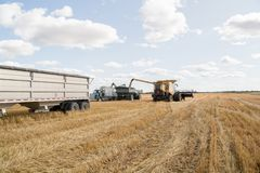 Harvesting a crop field on the prairie Stock Images