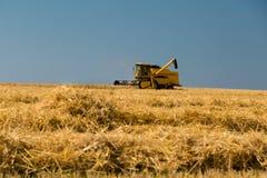 Harvesting crop Stock Photos