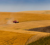 Harvesting crops. Combine harvesting crops in Washington State Stock Image
