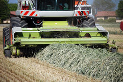 Harvesting Cut Hay Silage Stock Images