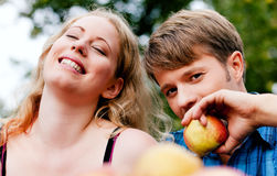 Harvesting - eating apples Stock Photography
