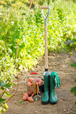 Harvesting equipment and potatoes Royalty Free Stock Images