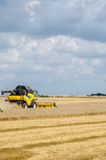 Combines harvesting field Royalty Free Stock Images