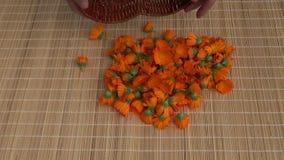 Harvesting fresh calendula marigold medical flowers stock footage