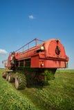 Harvesting fresh green peas Stock Images
