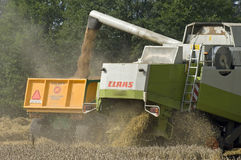 Harvesting grain with combine harvester and tractor. The grain is harvested with a combine of brand Claas Lexion type 450. At the grain harvest a lot of dust and Royalty Free Stock Photography
