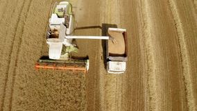 Harvesting of grain crops. The work of technology in the fields stock footage