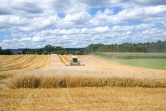 Harvesting of a grain field Stock Photo